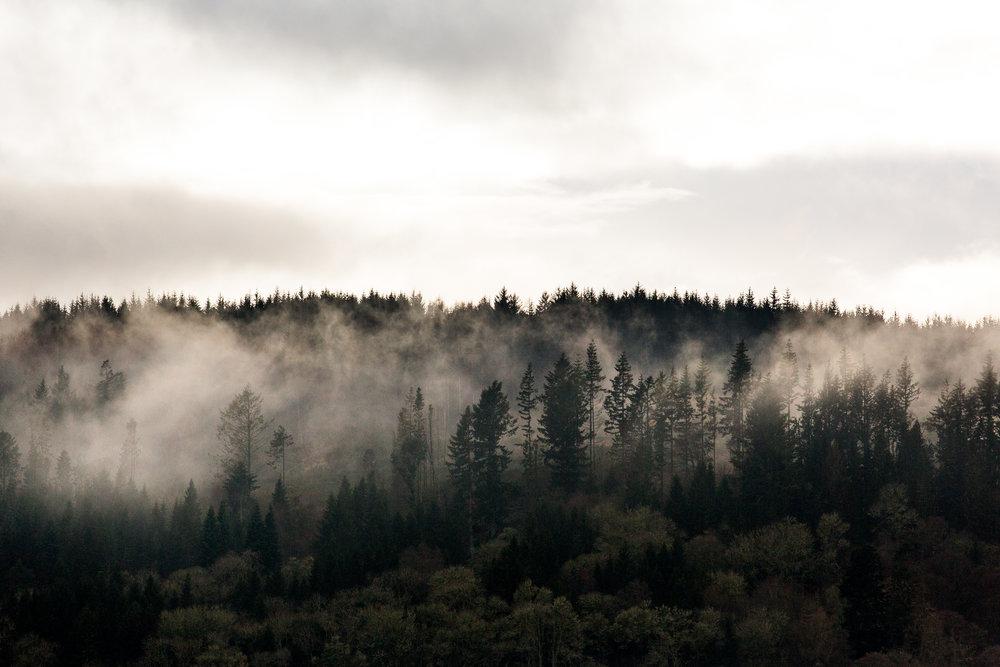 nicole-daacke-photography-scottish-highlands-elopement-wedding-photographer-isle-of-skye-elopement-photography-scotland-landscape-photography-culloden-inverness-stirling-destination-wedding-united-kindgom-wedding-photographer-5.jpg