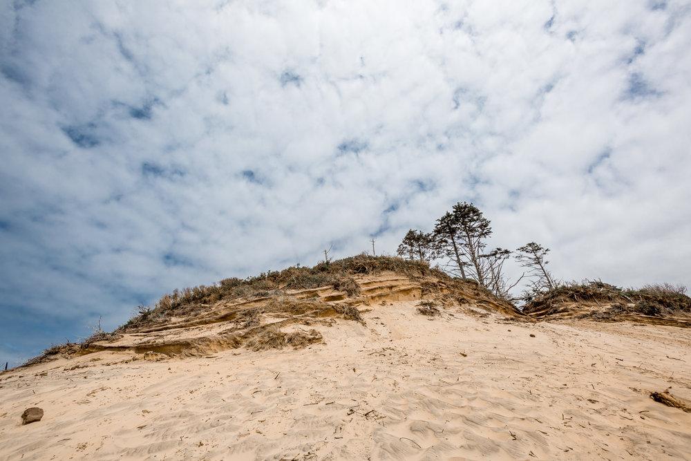nicole-daacke-photography-oregon-coast-landscapes-elopement-photographer-wedding-photography-adventure-lifestyle-roadtrip-along-oregon-coast-cape-kiwanda-oceanside-beach-cannon-beach-oregon-pnw-11.jpg