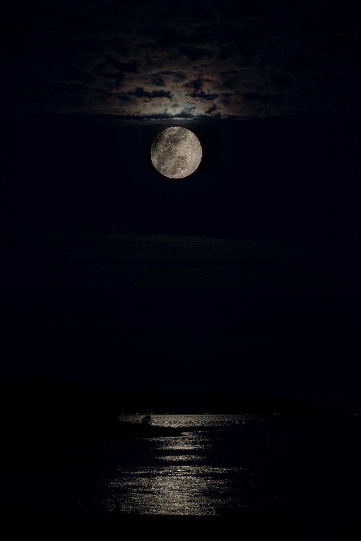 nicole-daacke-photography-oregon-coast-landscapes-elopement-photographer-wedding-photography-adventure-lifestyle-roadtrip-along-oregon-coast-cape-kiwanda-oceanside-beach-cannon-beach-oregon-pnw-21.jpg