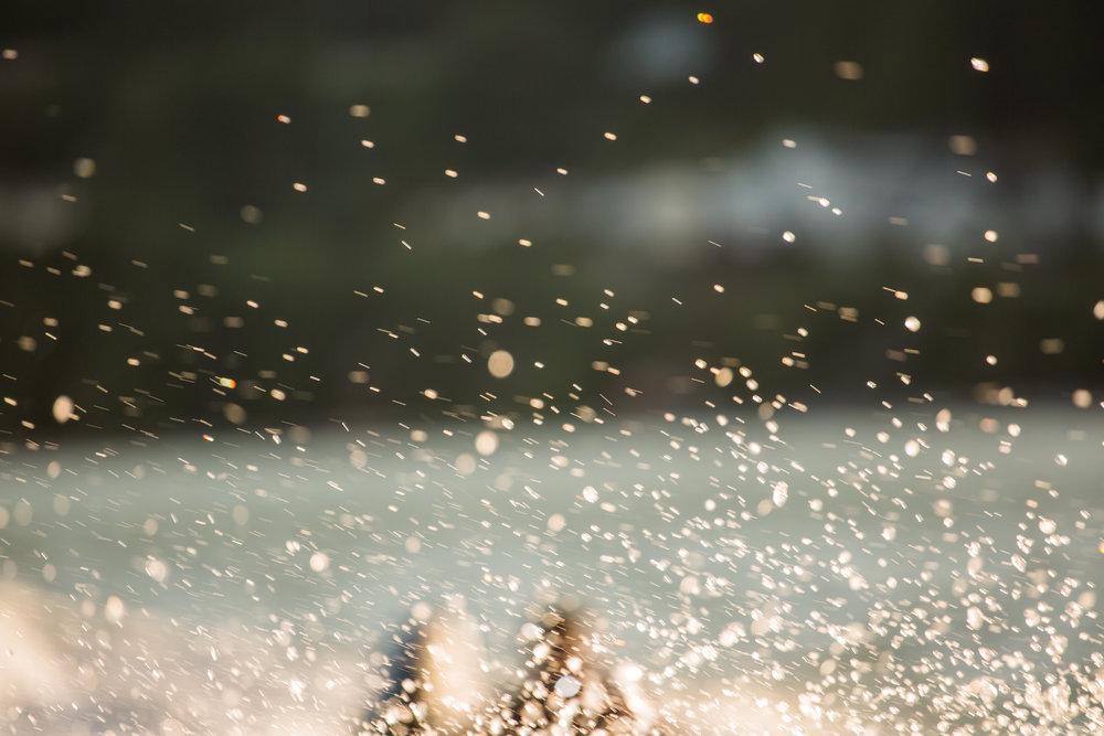 nicole-daacke-photography-oregon-coast-landscapes-elopement-photographer-wedding-photography-adventure-lifestyle-roadtrip-along-oregon-coast-cape-kiwanda-oceanside-beach-cannon-beach-oregon-pnw-23.jpg