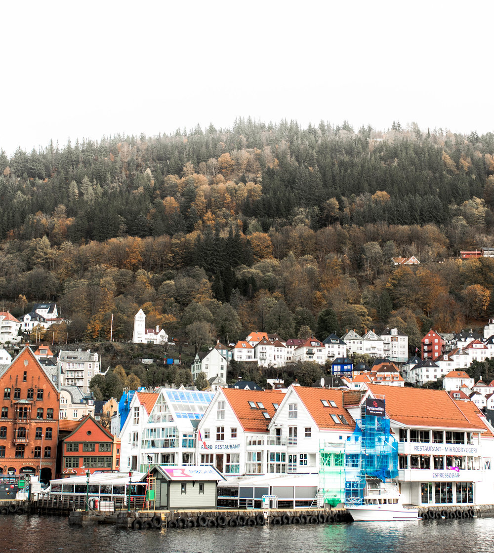 nicole-daacke-photography-norway-bergen-norway-in-a-nutshell-landscapes-elopement-photographer-photography-fall-october-norwegian-air-explore-adventure-4.jpg