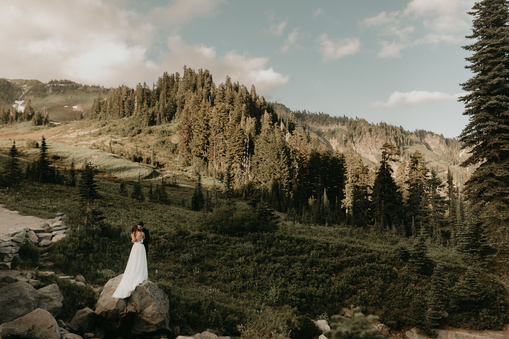 Nicole-Daacke-Photography-Mt-Rainier-elopement-photographer-washington-mountain-epic-wedding-photography-wildflowers-at-rainier-pine-tree-cloudy-summer-day-at-mountain-rainier-19.jpg