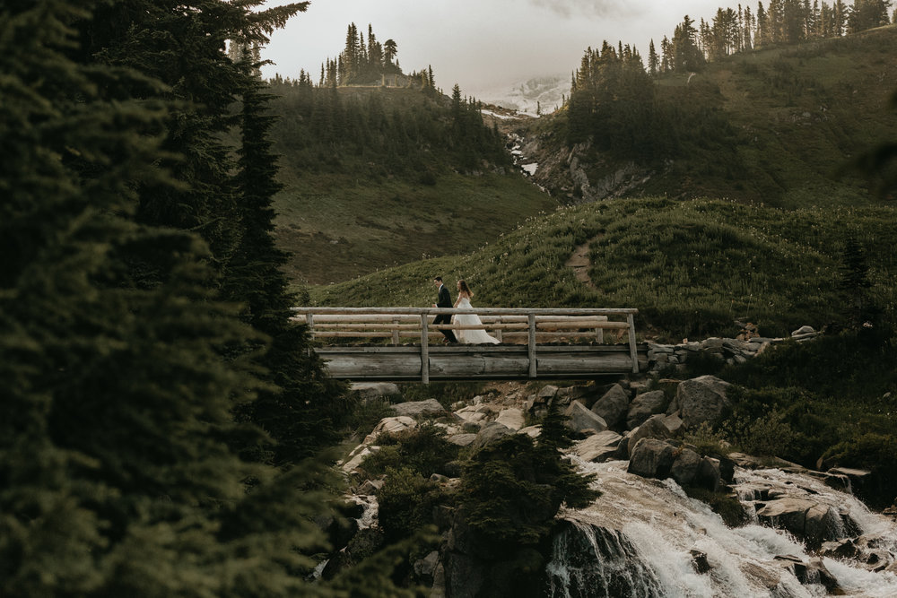 Nicole-Daacke-Photography-Mt-Rainier-elopement-photographer-washington-mountain-epic-wedding-photography-wildflowers-at-rainier-pine-tree-cloudy-summer-day-at-mountain-rainier-21.jpg