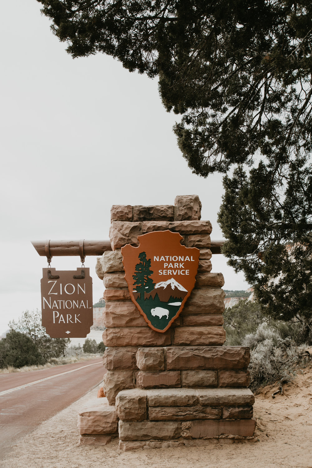 nicole-daacke-photography-zion-national-park-elopement-photographer-canyon-overlook-trail-elope-hiking-adventure-wedding-photos-fall-utah-red-rock-canyon-stgeorge-eloping-photographer-1.jpg