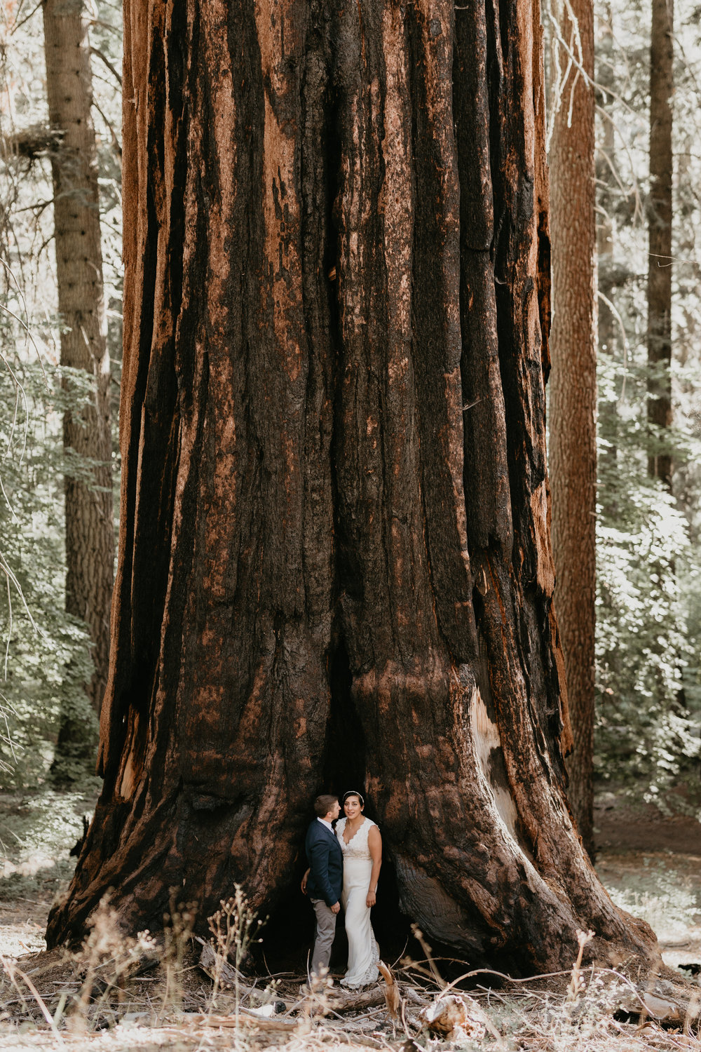 nicole-daacke-photography-sequoia-national-park-adventurous-elopement-sequoia-elopement-photographer-redwoods-california-intimate-wedding-photographer-9.jpg