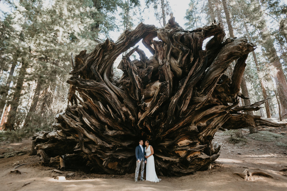 nicole-daacke-photography-sequoia-national-park-adventurous-elopement-sequoia-elopement-photographer-redwoods-california-intimate-wedding-photographer-11.jpg
