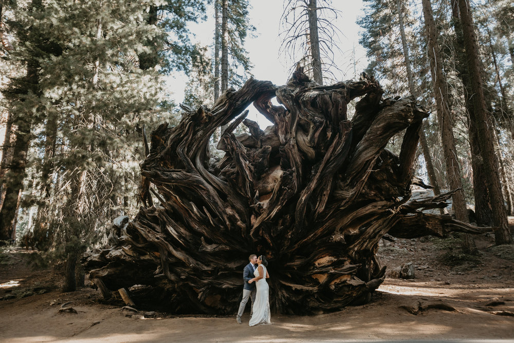 nicole-daacke-photography-sequoia-national-park-adventurous-elopement-sequoia-elopement-photographer-redwoods-california-intimate-wedding-photographer-13.jpg