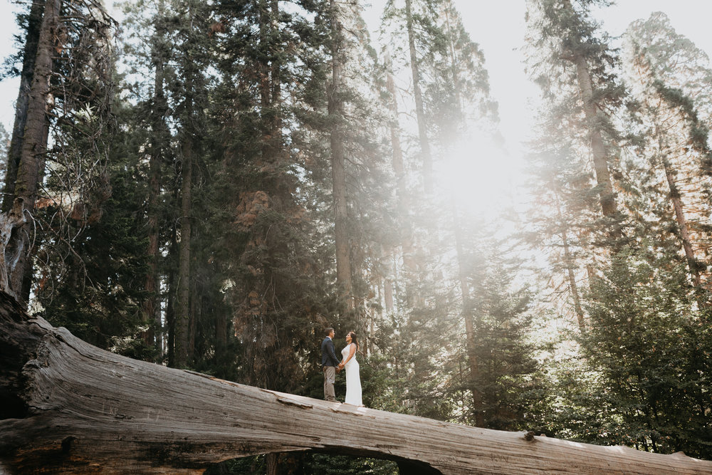 nicole-daacke-photography-sequoia-national-park-adventurous-elopement-sequoia-elopement-photographer-redwoods-california-intimate-wedding-photographer-19.jpg