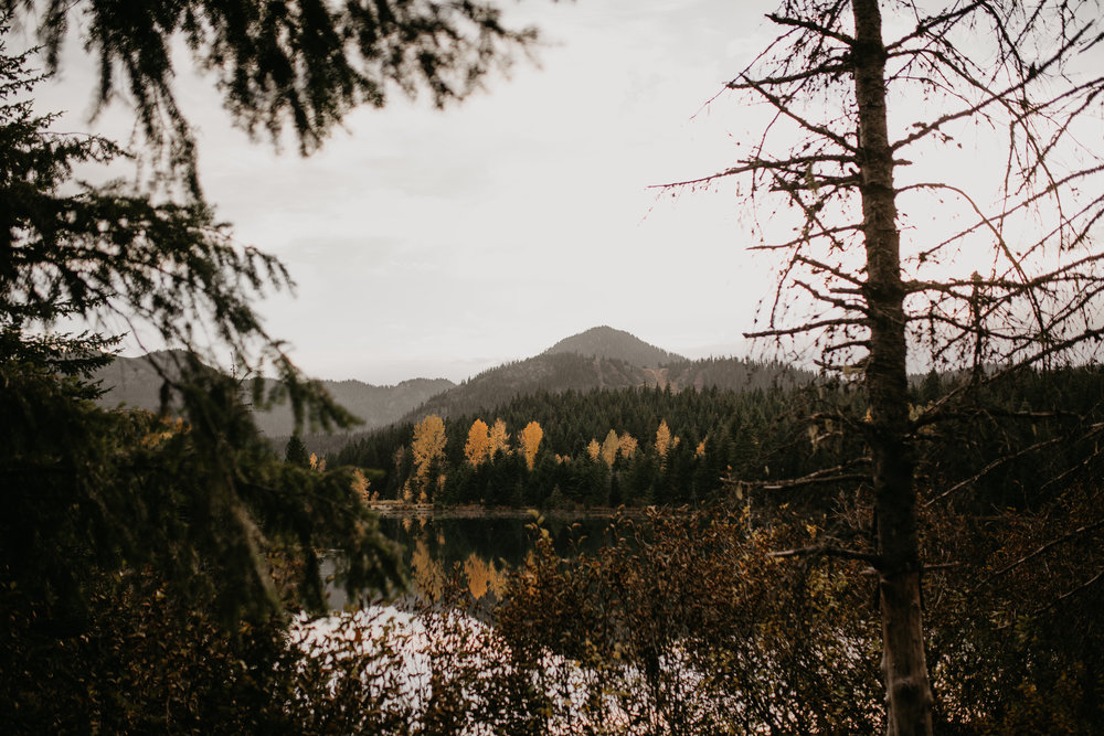 nicole-daacke-photography-mountain-view-elopement-at-gold-creek-pond-snoqualmie-washington-wa-elopement-photographer-photography-adventure-elopement-in-washington-fall-lakeside-golden-sunset-boho-fun-bride-0535.jpg