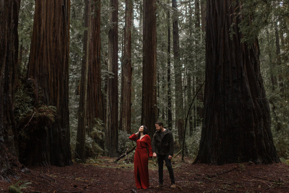 nicole-daacke-photography-redwoods-national-park-forest-rainy-foggy-adventure-engagement-session-humboldt-county-old-growth-redwood-tree-elopement-intimate-wedding-photographer-37.jpg