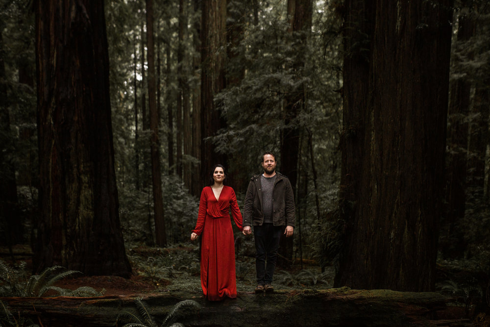 nicole-daacke-photography-redwoods-national-park-forest-rainy-foggy-adventure-engagement-session-humboldt-county-old-growth-redwood-tree-elopement-intimate-wedding-photographer-54.jpg