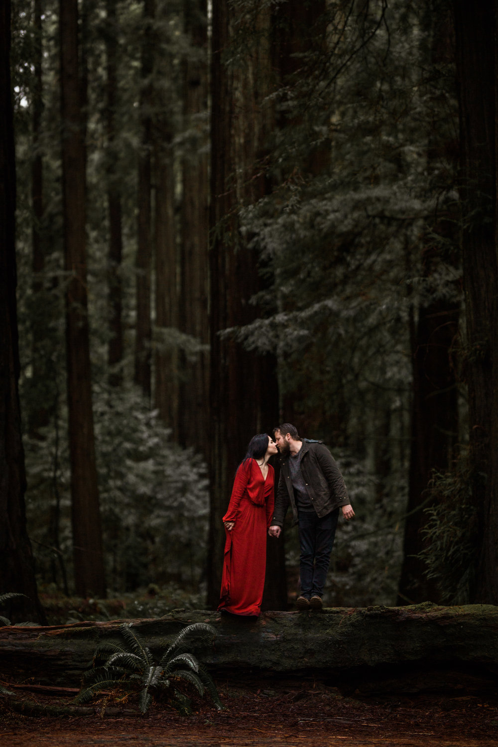 nicole-daacke-photography-redwoods-national-park-forest-rainy-foggy-adventure-engagement-session-humboldt-county-old-growth-redwood-tree-elopement-intimate-wedding-photographer-56.jpg