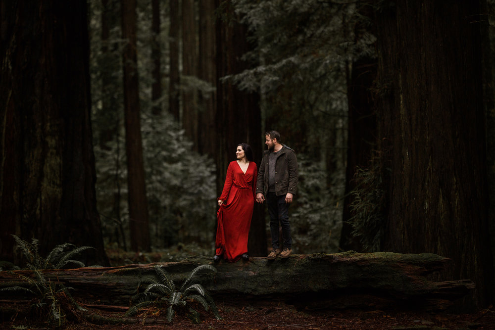 nicole-daacke-photography-redwoods-national-park-forest-rainy-foggy-adventure-engagement-session-humboldt-county-old-growth-redwood-tree-elopement-intimate-wedding-photographer-57.jpg