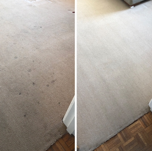 Carpet Cleaning Dorset Before and After.JPG