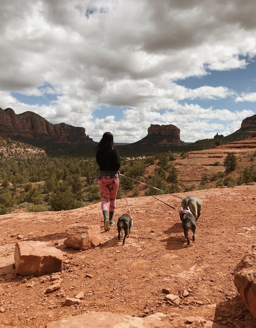 Road Trip Guide to Arizona and New Mexico // Laura Goldenberger
