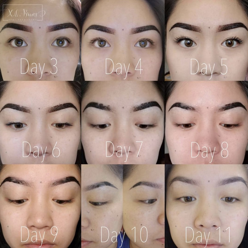 *Photo from xobrows.com
