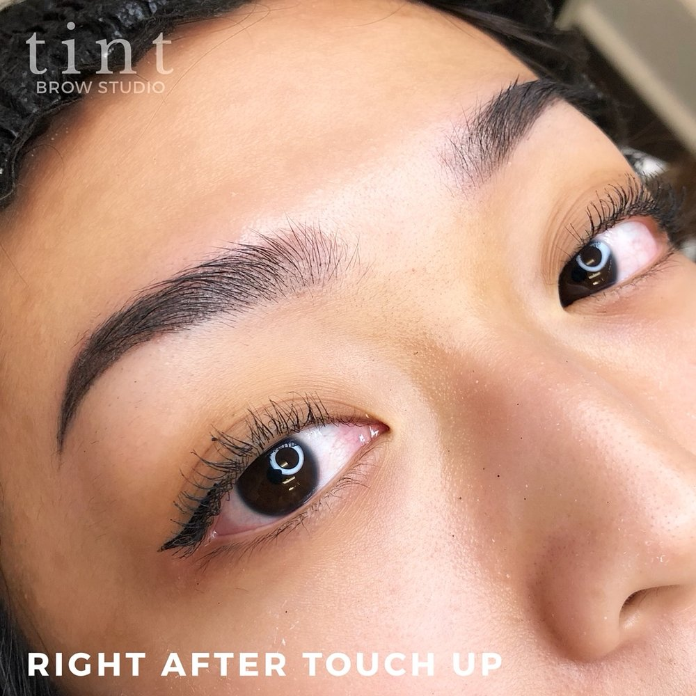 Ombre Powder Brows NYC_Touch Up