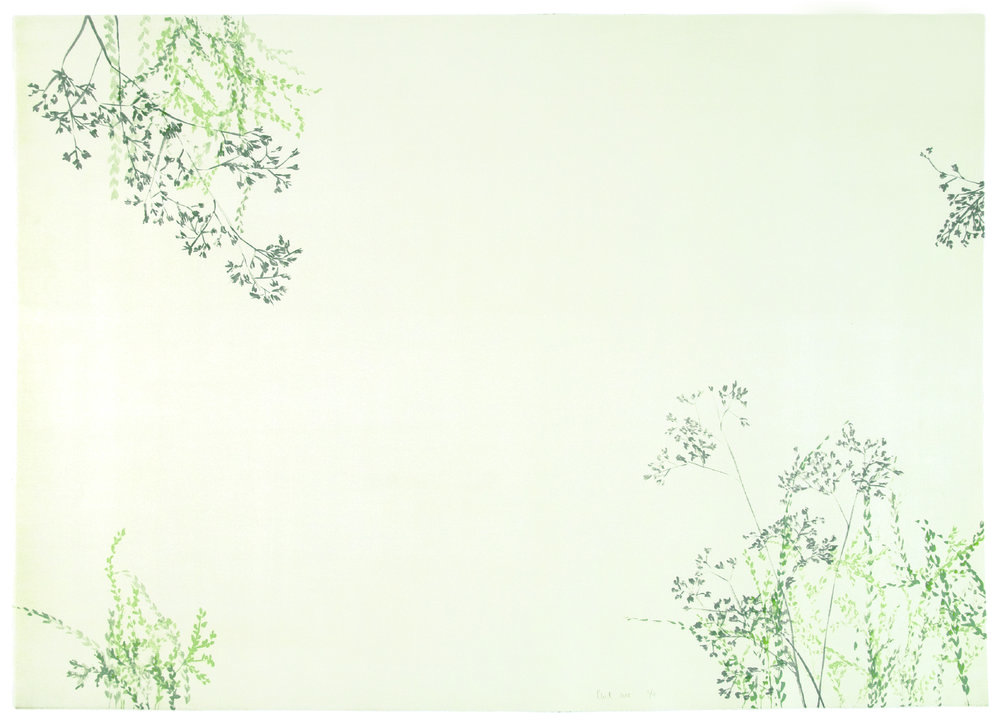 Cécile Wick, Garten II, 2008, Lithographie, 70 x 100 cm. © Cécile Wick