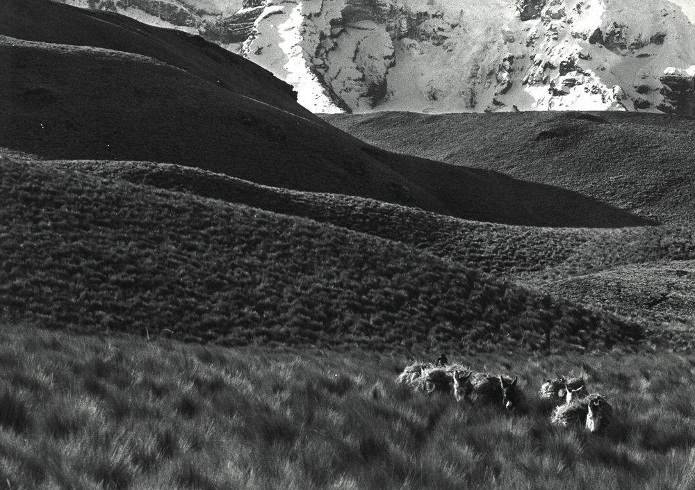 De la série des Hieleros , 1981-1982 Photographie argentique, tirage réalisé par J.-C. Wicky coll. privée © Ayants droits
