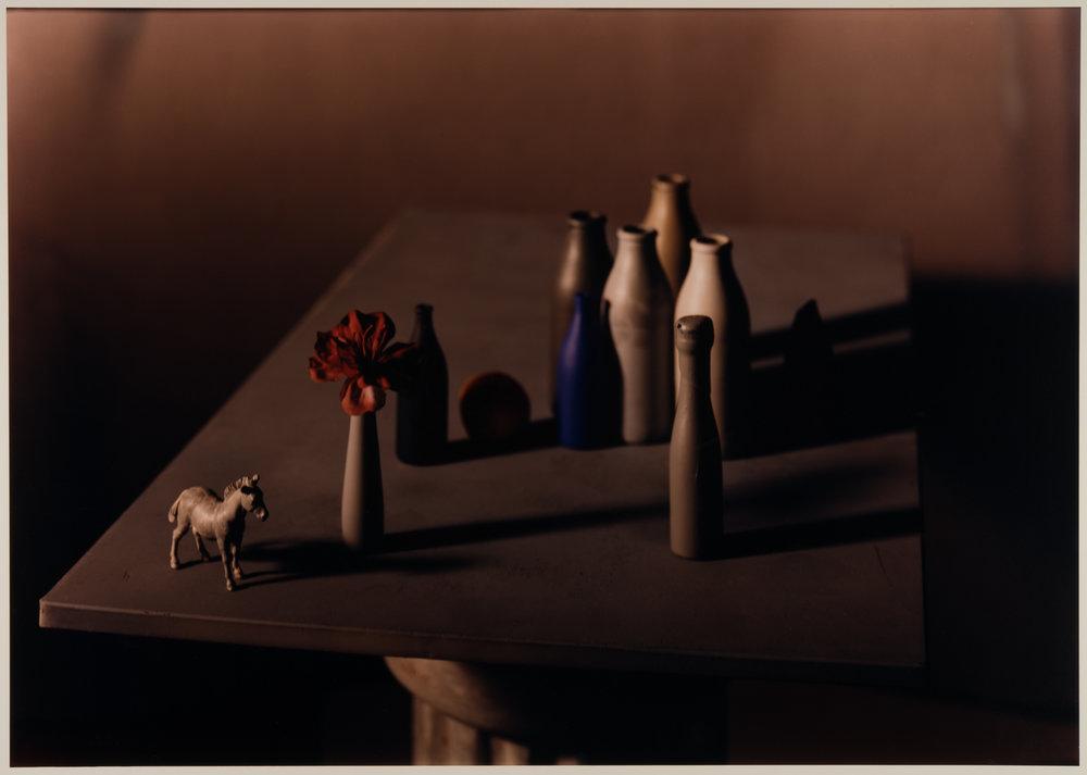 Jan Groover, Sans titre, vers 1987 © Musée de l'Elysée, Lausanne – Fonds Jan Groover