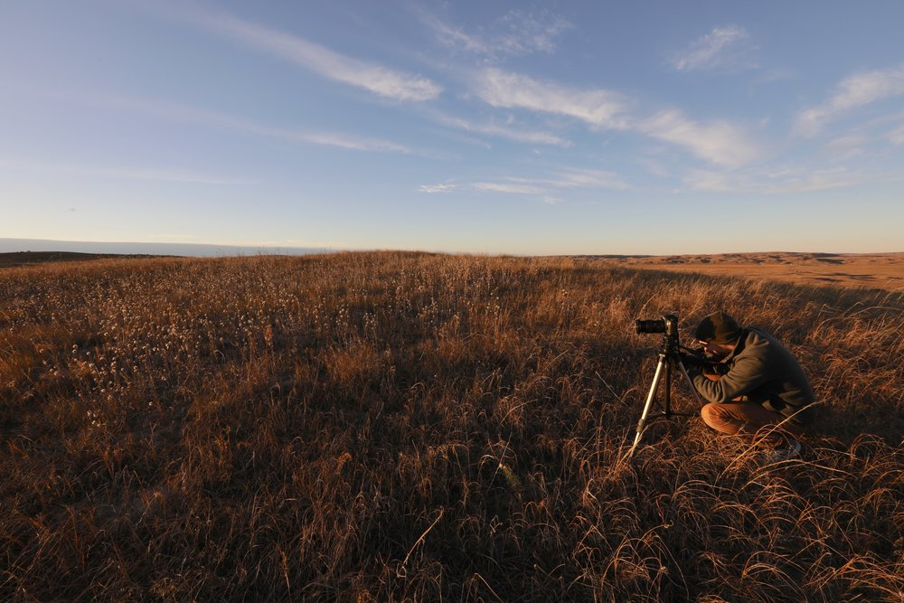 Documentary Filmmaking - Over time we will be developing a series of short documentaries featuring different aspects of the Sandhills. A feature length documentary is also being planned.