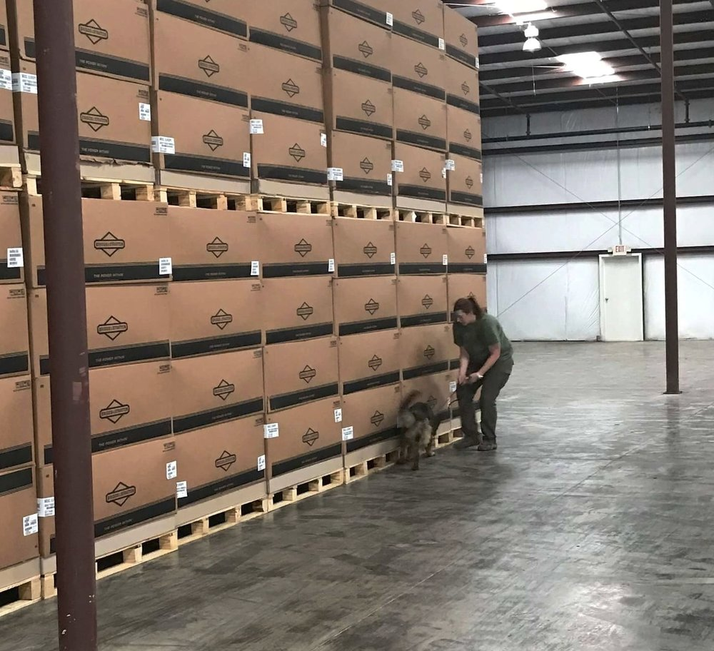 Global K9 Protection Group Canine Team Searching Cargo