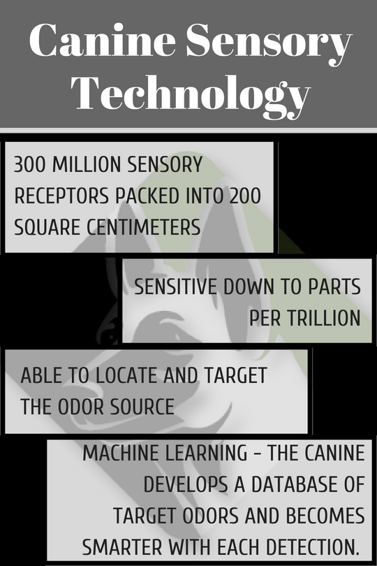 Canine Sensory Technology.png