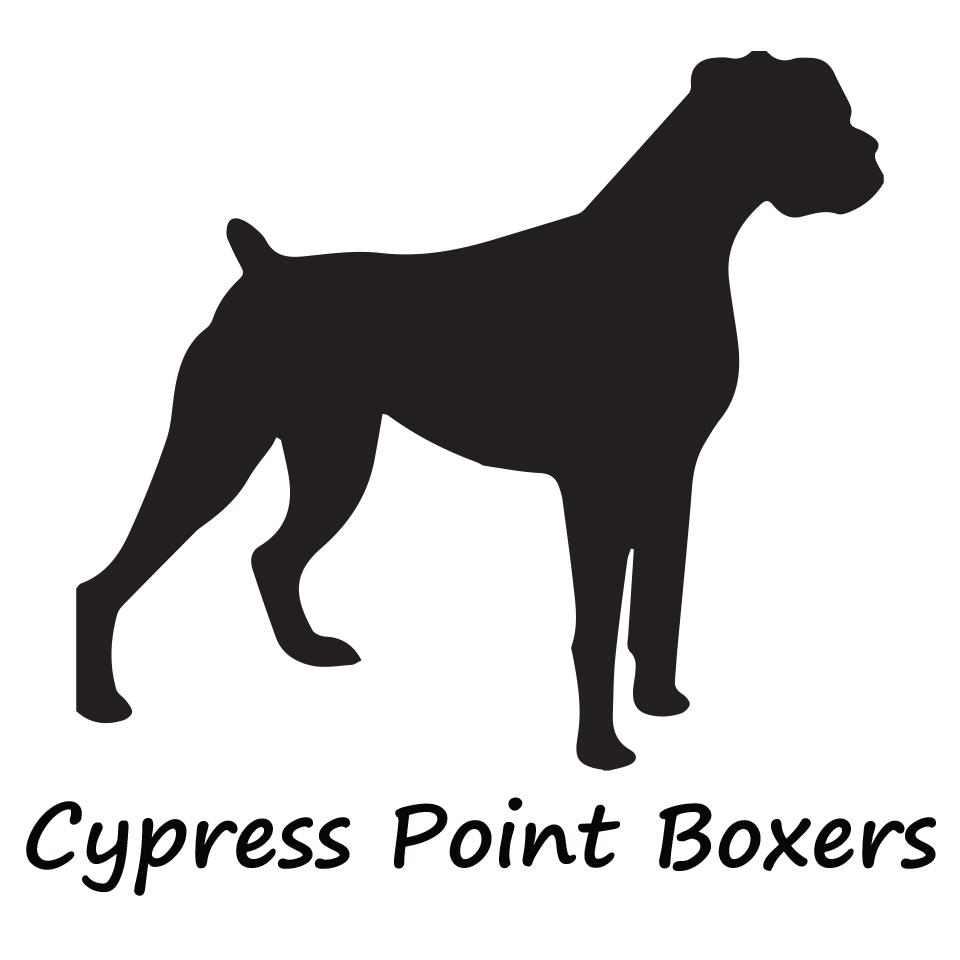 Cypress Boxers.jpg