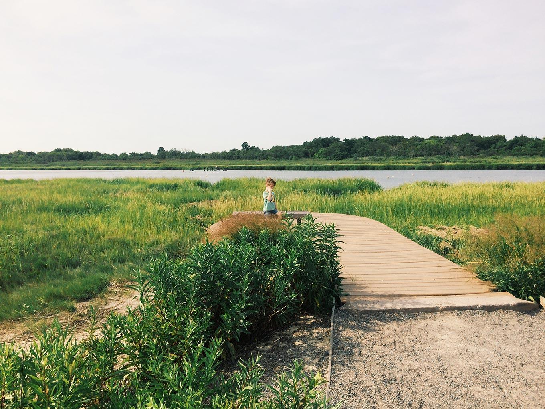 2014-08-17-marinepark@2x