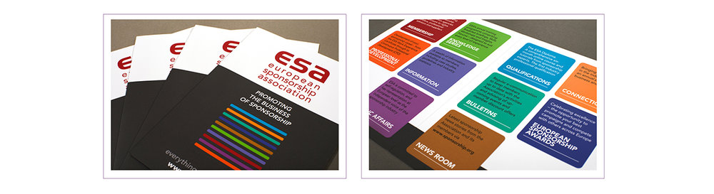 ESA Corp flyer.jpg