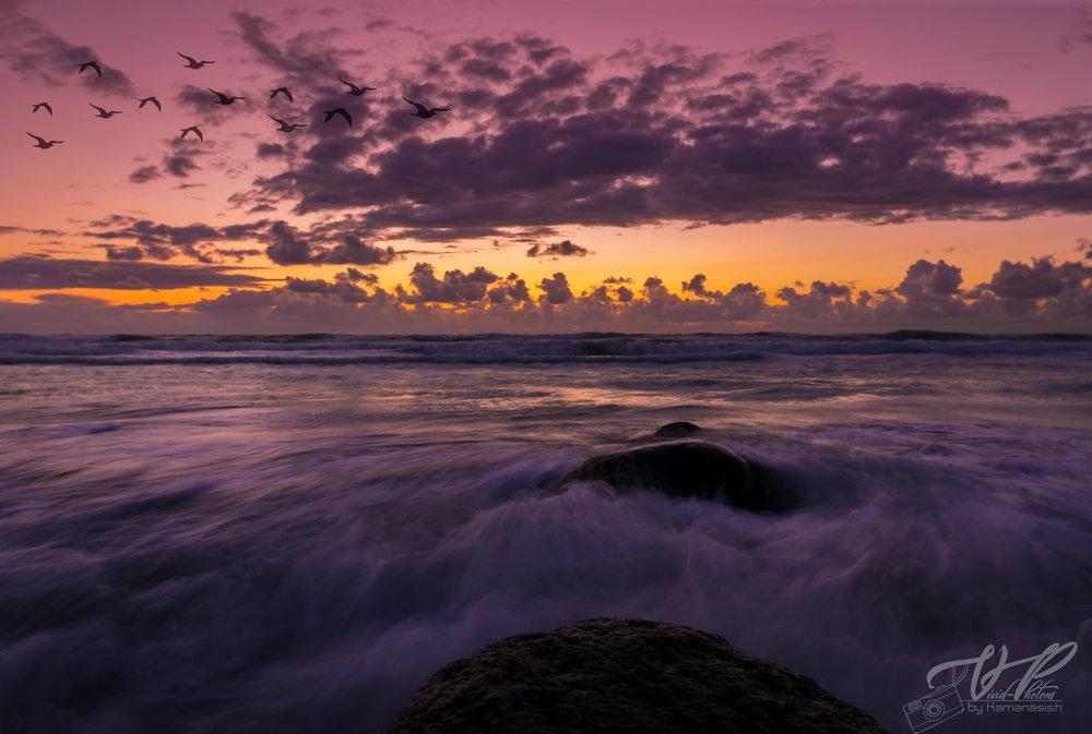 sunset_jpg.jpg