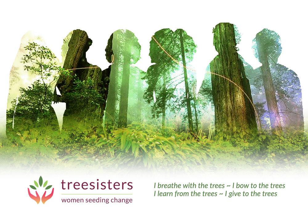 TreeSisters flyer frontv5.jpg