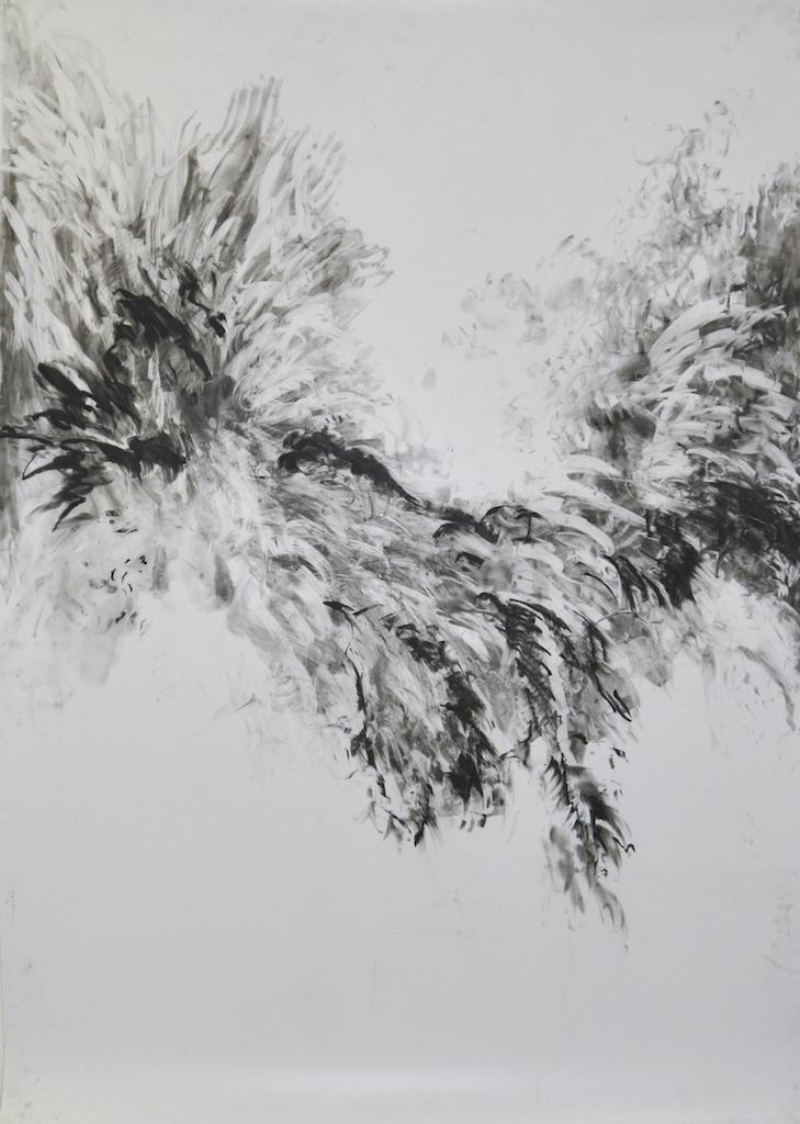 Murmuration for starlings I