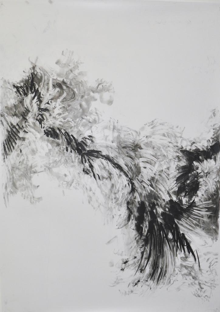 Murmuration for starlings IV