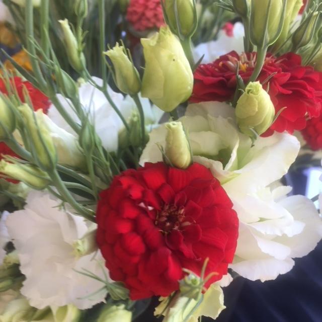 Red Oklahoma zinnias nestled among white lisianthus