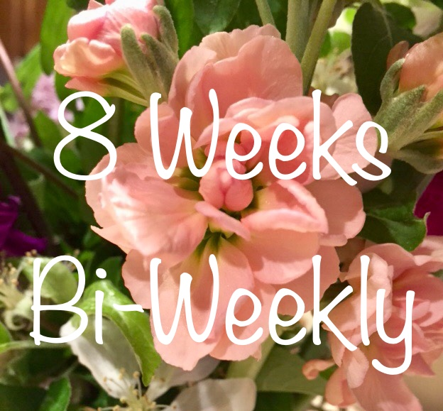 4 Bouquets, One Every Other Week for 8 Weeks - $20/Bouquet for a total of $80Billed in 2 equal installments of $40Sign-up anytime before Friday, August 9th