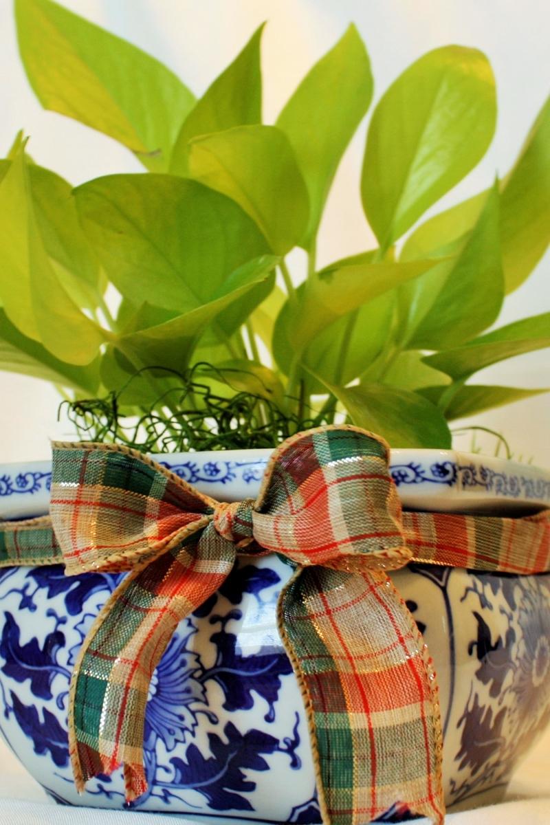 Planter or Vase