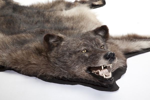 wolfrug3.jpg