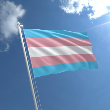 transgender-flag-std