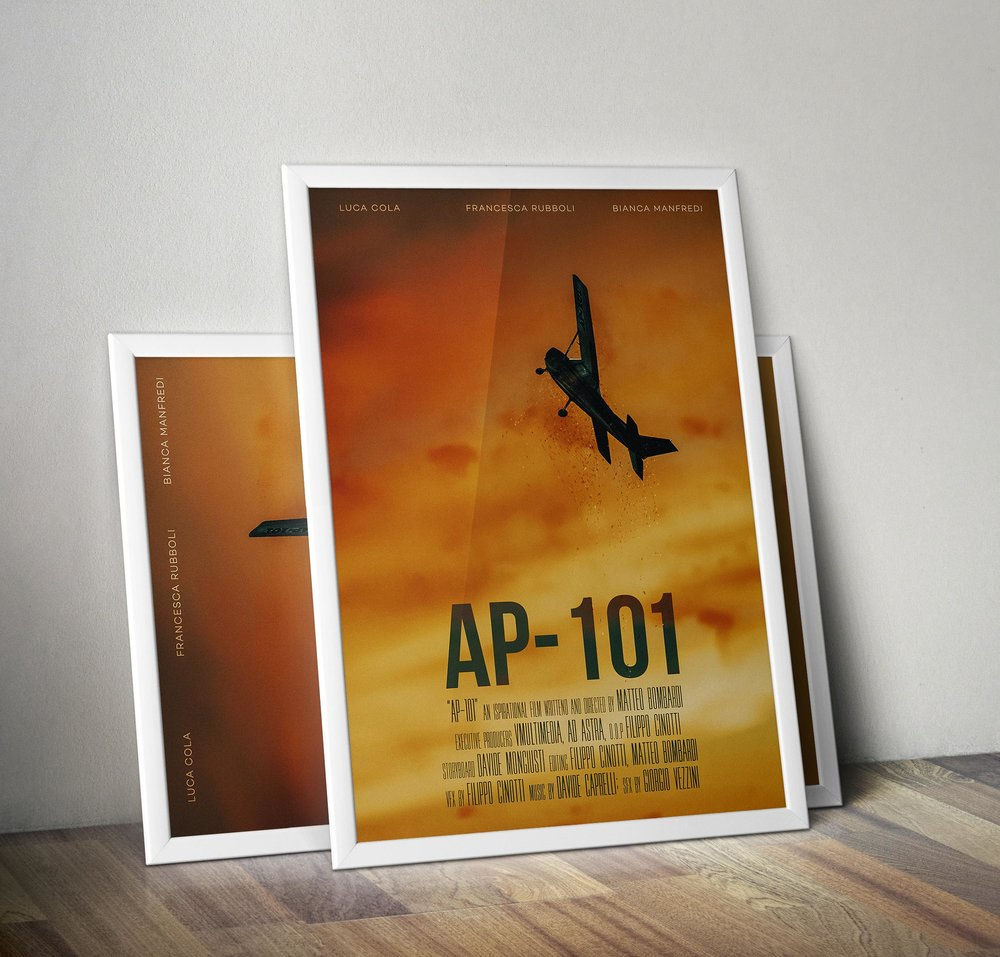 ap_101_frame.jpg