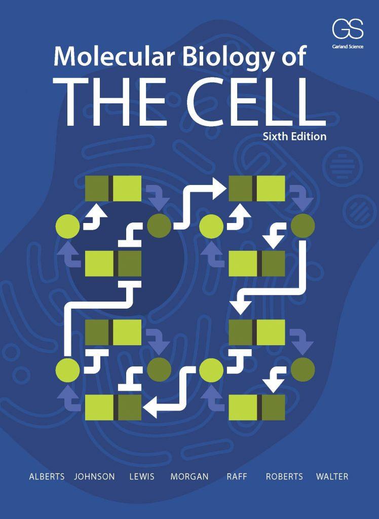 mol bio of th cell.jpg