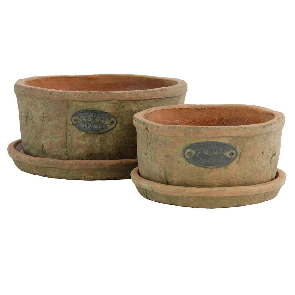 Or plant them here - For a more casual farmhouse style, try the classic terra cotta pot. Cluster them in odd numbers.