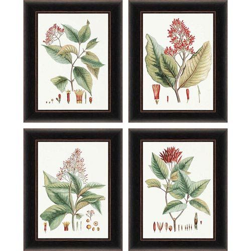 Paragon Crimson Botanical by Hierseman - 20 x 16 Framed Print, Set of Four2.75 in. Burned Cherry Finished with Gold Edge Polystyrene FrameFrame Finish: Distressed Espresso Finish$284.44