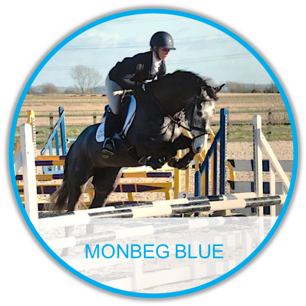 MONBEG BLUE.png