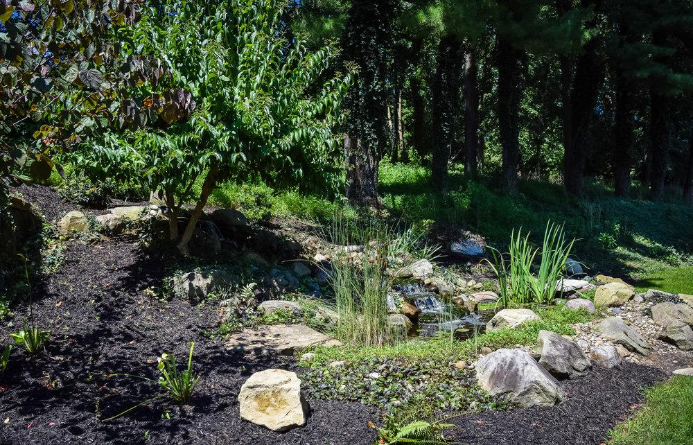 Buckeye_Landscaping97.jpg