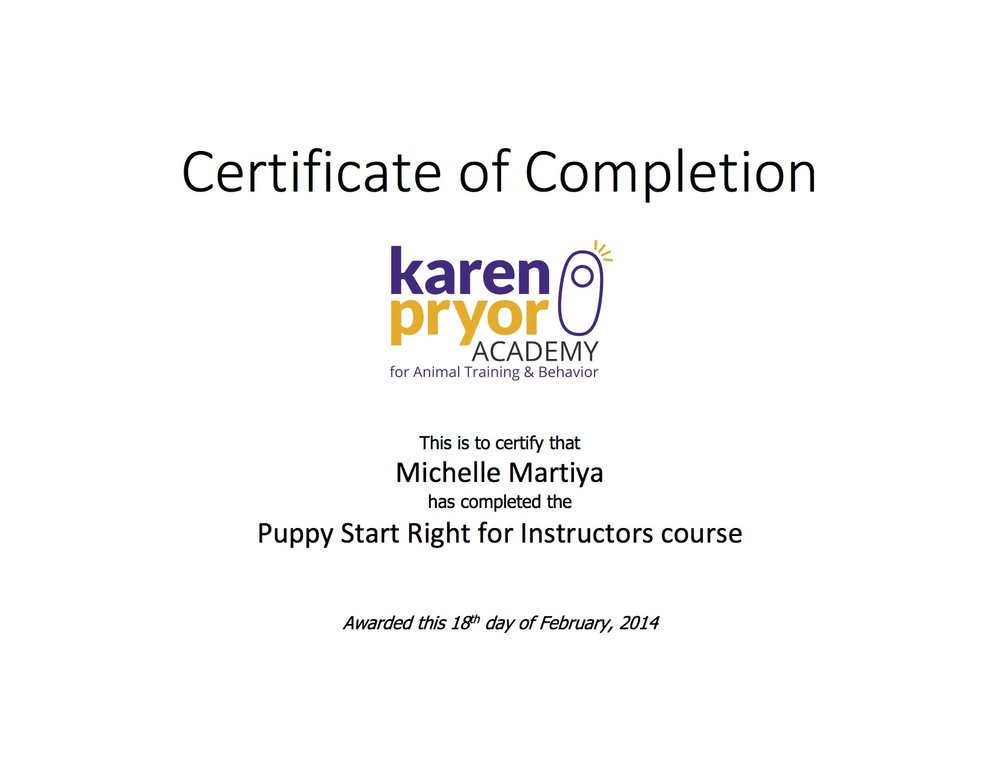 Certificate of completion PSR-Michelle Martiya.jpg
