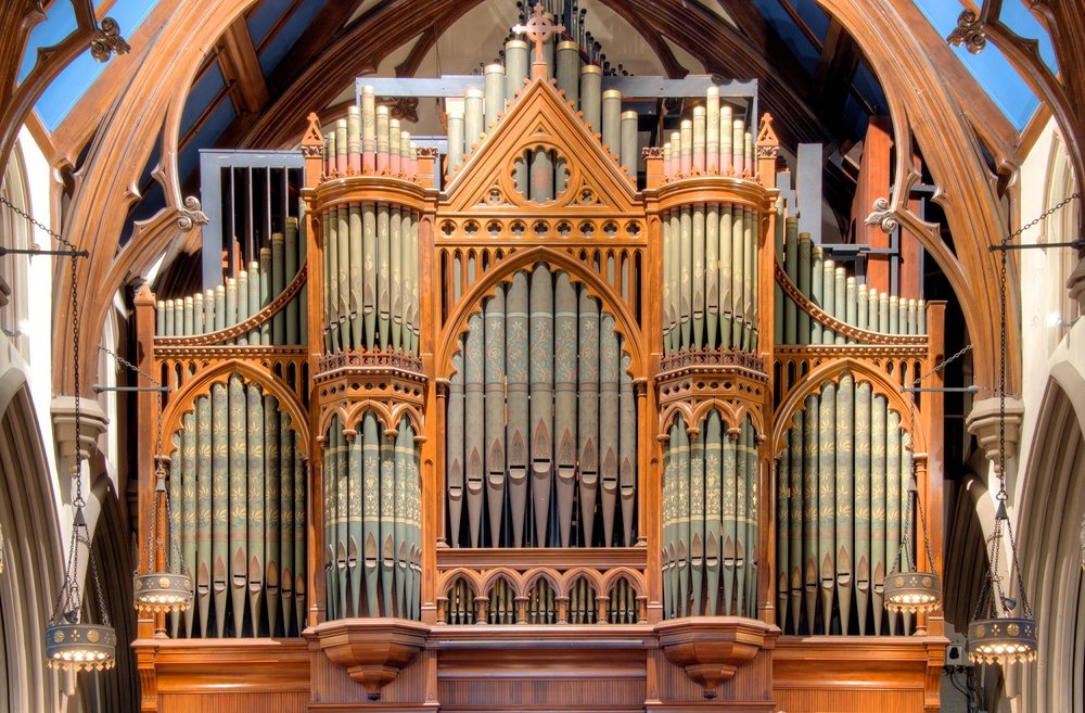 Organ-Gallery-BK-1-web.jpg