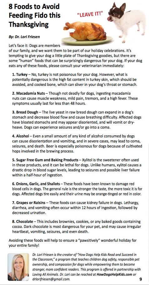 8 Foods to Avoid Feeding Fido