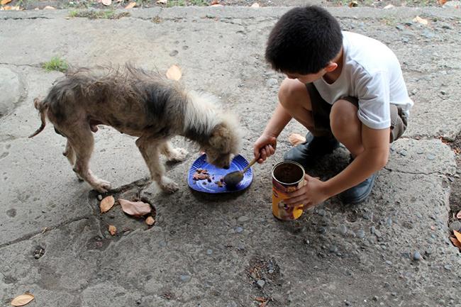 children being kind to animals