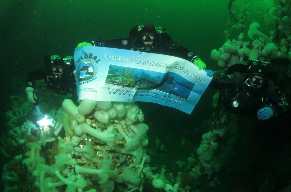 3-divers-banner.jpg